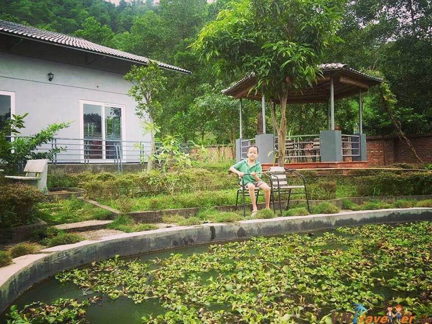 99 Homestay Hà Nội giá rẻ đẹp có hồ bơi, gần phố cổ, ngoại thành từ 100k