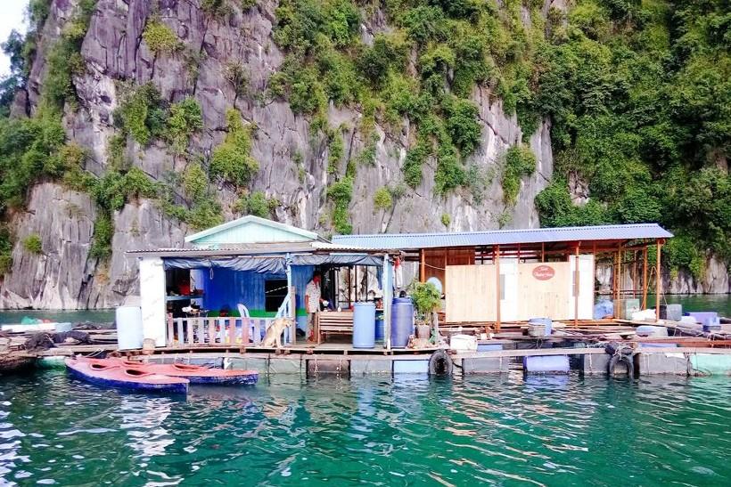 REVIEW 30 Homestay Cát Bà giá rẻ gần biển view đẹp tốt nhất chỉ từ 100k