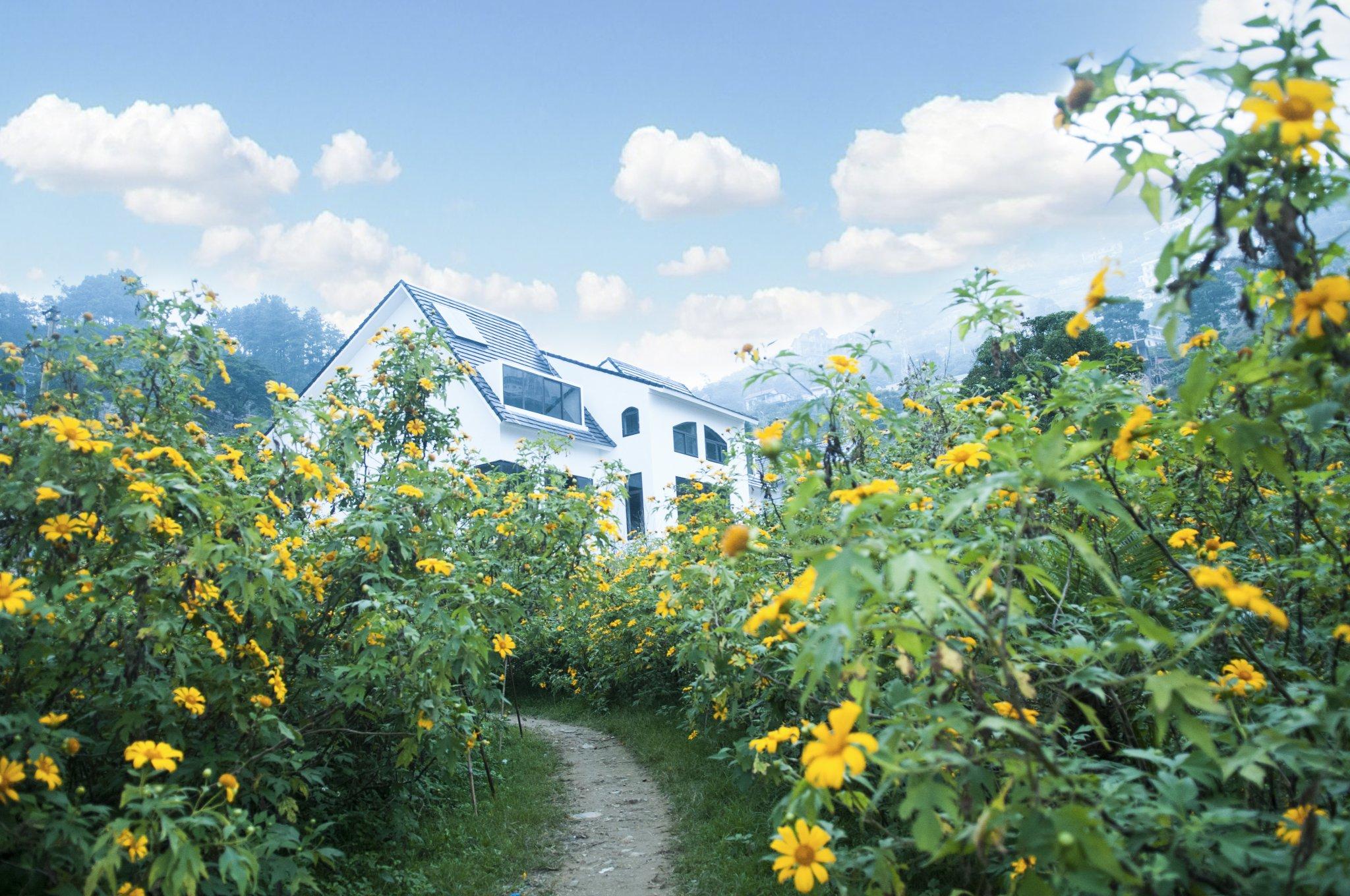 31 Villa Homestay Tam Đảo Vĩnh Phúc giá rẻ đẹp có hồ bơi nên nghỉ dưỡng